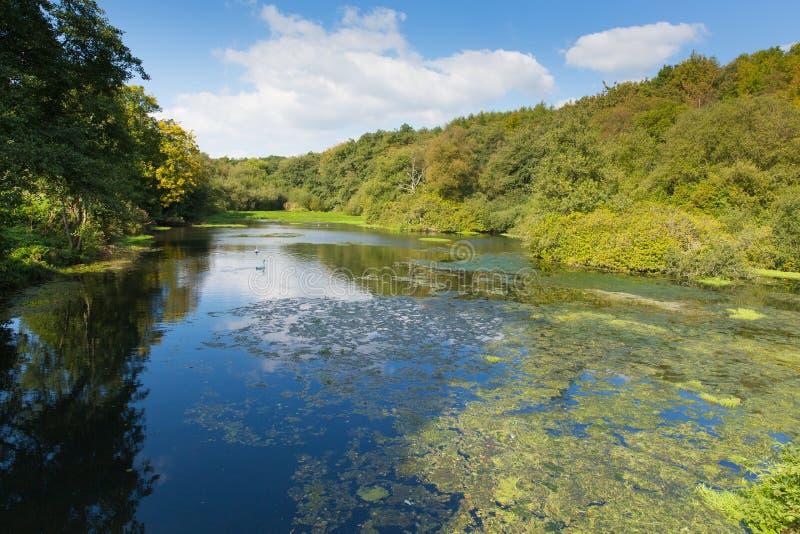 Otterhead sjöar östliga Devon England UK i de Blackdown kullarna royaltyfri bild