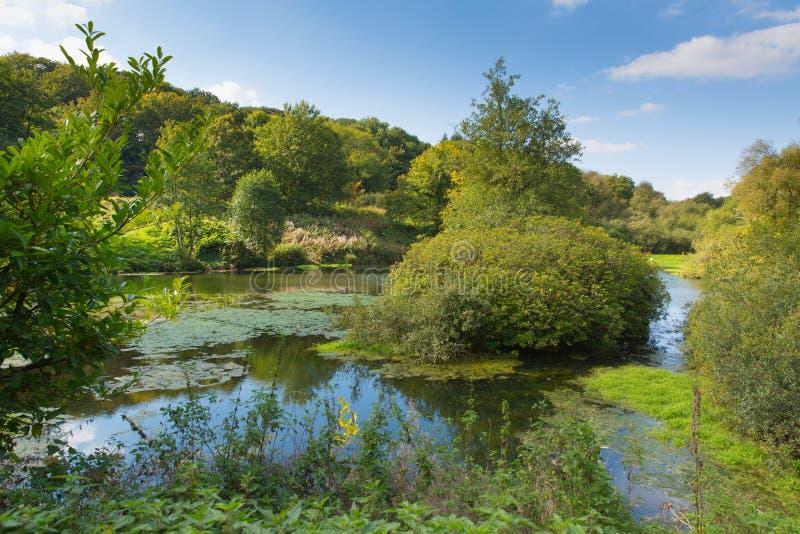 Otterhead sjöar östliga Devon England UK i de Blackdown kullarna fotografering för bildbyråer