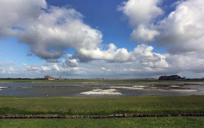 Ottersaat en Texel, Países Bajos foto de archivo