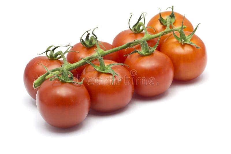 Otto Cherry Tomatoes su un fondo bianco immagine stock