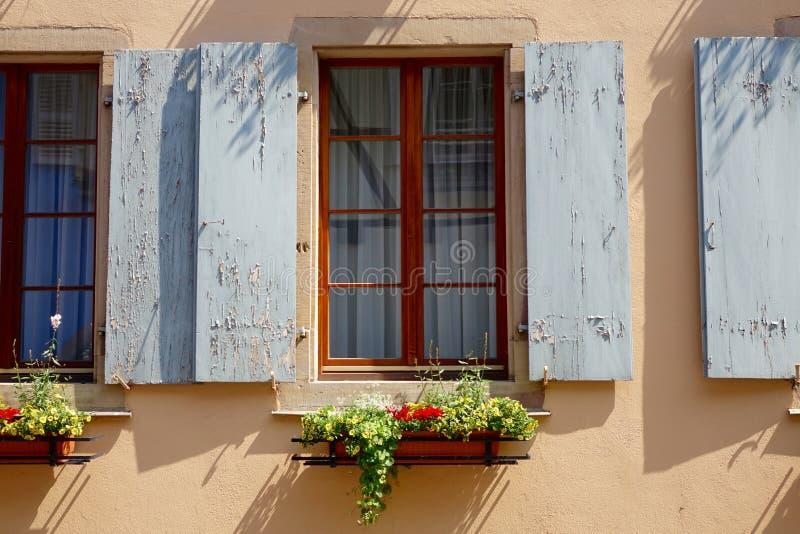 Otturatore grigio della finestra con i fiori fotografie stock