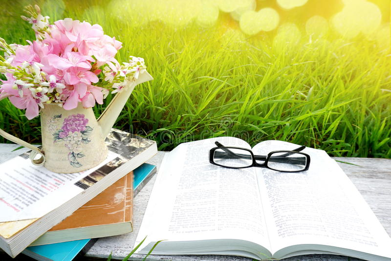 Otwarta książka, okulary przeciwsłoneczni, książki, menchie kwitnie nad natury zielonej trawy tłem obraz stock