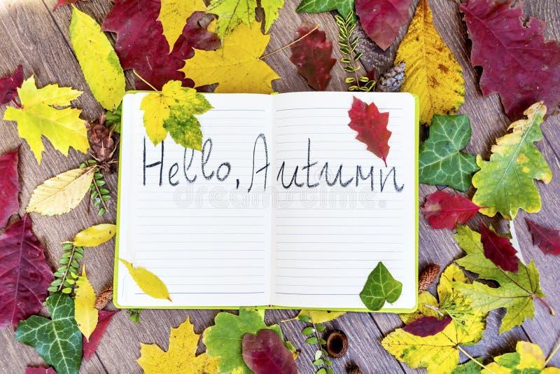 Otwarta książkowa obwódka liśćmi z jesień znakiem cześć obraz royalty free
