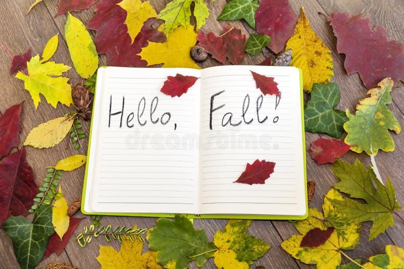 Otwarta książkowa obwódka liśćmi z jesień znakiem cześć fotografia royalty free