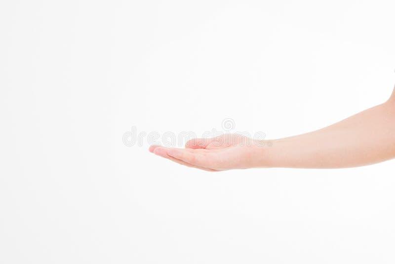Otwarta mężczyzna ręka, palma up odizolowywająca na białym tle Frontowy widok Egzamin próbny Up kosmos kopii szablon blank zdjęcie royalty free
