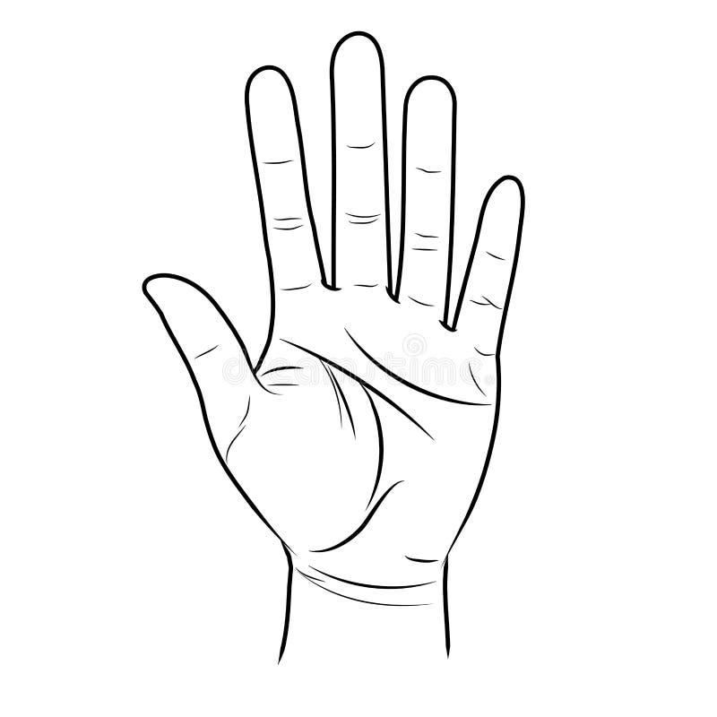 Otwarta ręka podnosi up Wróżba liniami na palmie ilustracja wektor
