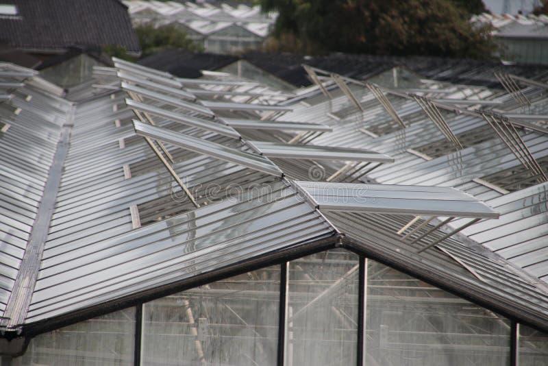 Otwarte okno szklarnie w wzorze w ` s-Gravenzande, Westland holandie zdjęcie stock