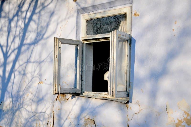 Otwarte okno w małym starym glina domu zas?ony fotografia royalty free