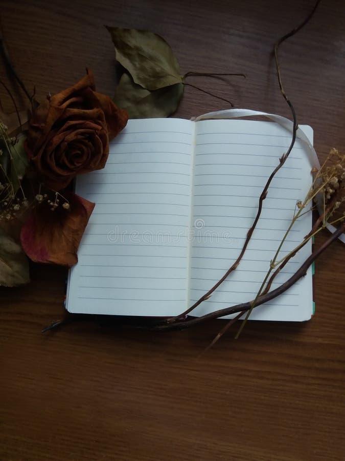 Otwarty notatnik i suszący kwiaty zdjęcia royalty free