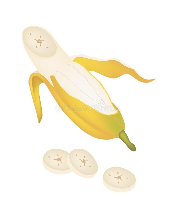 Otwiera Dojrzałego Kultywującego banana na Białym tle ilustracja wektor