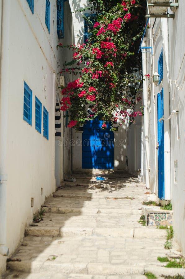 Otwiera drzwi Sidi Bou Saïd obrazy stock