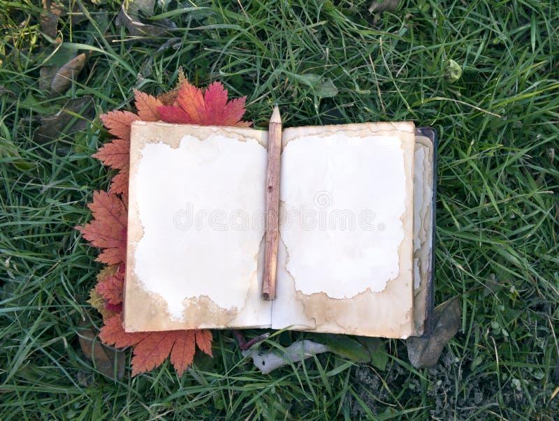 Otwiera dzienniczek z liśćmi klonowymi na trawie zdjęcie royalty free
