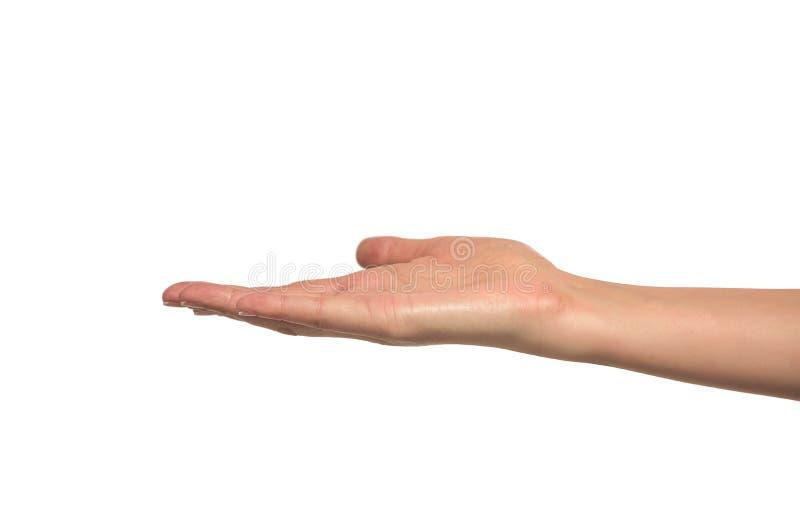Otwiera kobiety rękę, palma up zdjęcia royalty free