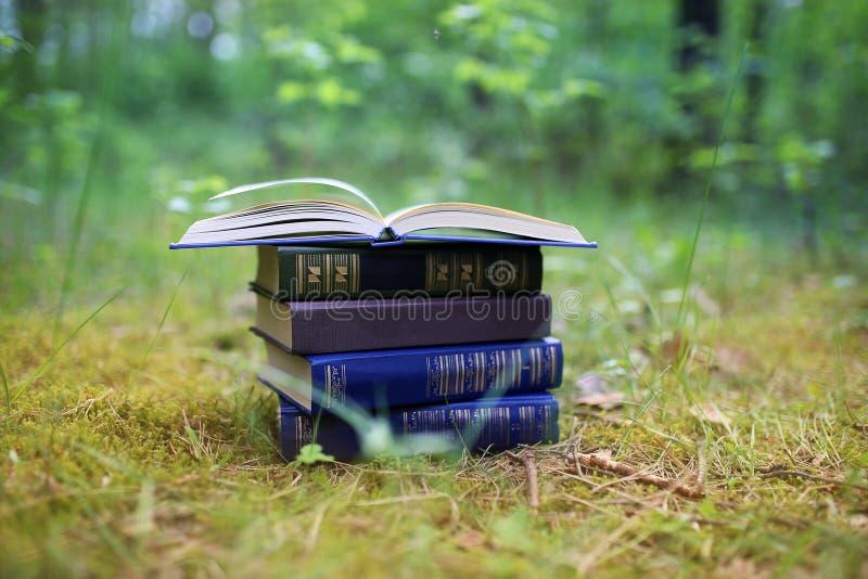 Otwiera książki plenerowe Książki w drewnach zdjęcie stock