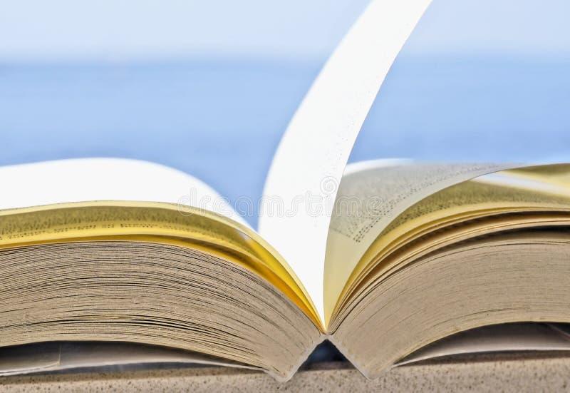 Otwiera książkowego strony kręcenie z wiatrem w błękitnym tle z bezpłatną przestrzenią obrazy royalty free