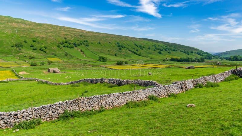 Ouïe de Halton, North Yorkshire, Angleterre, R-U images stock