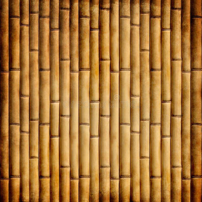 Oud bamboe stock foto