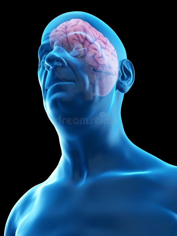 Oud bemant hersenen vector illustratie