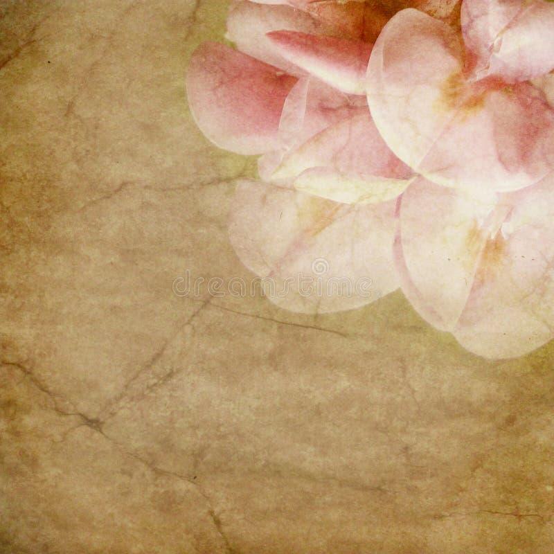 Oud document met bloemenpatroon stock illustratie