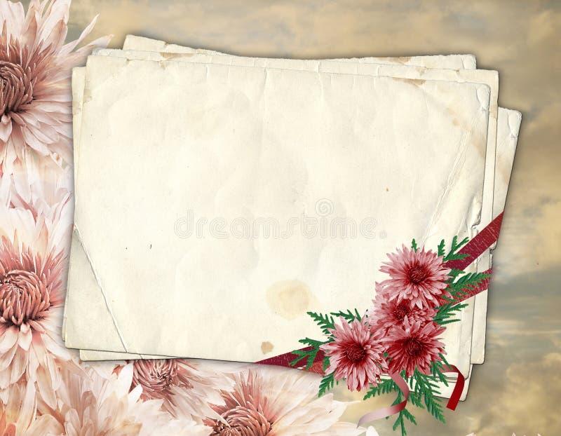 Oud document met chrysant vector illustratie