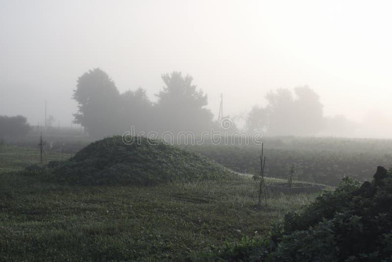 Oud dorp in de ochtendmist stock foto's