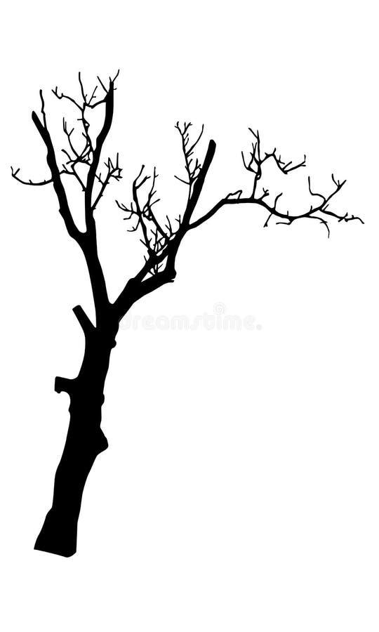Oud droog boomsilhouet royalty-vrije illustratie