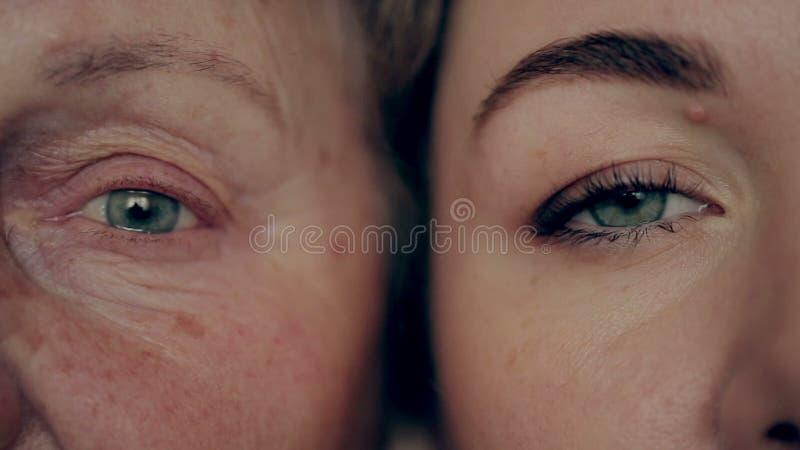 Oud en jong oog Kleindochter en grootmoeder van aangezicht tot aangezicht