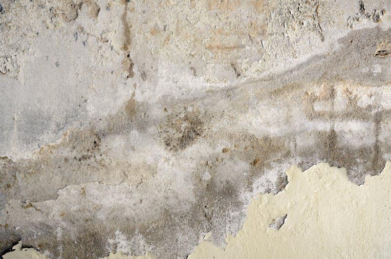 Oud en verslechter concrete muur stock afbeeldingen