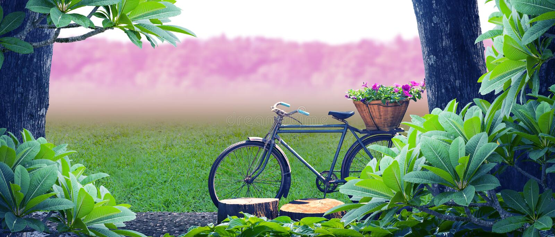 Oud fietspark stock foto's