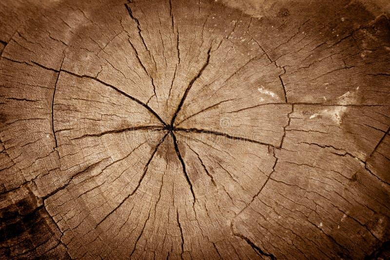 Oud gebarsten hout stock afbeeldingen