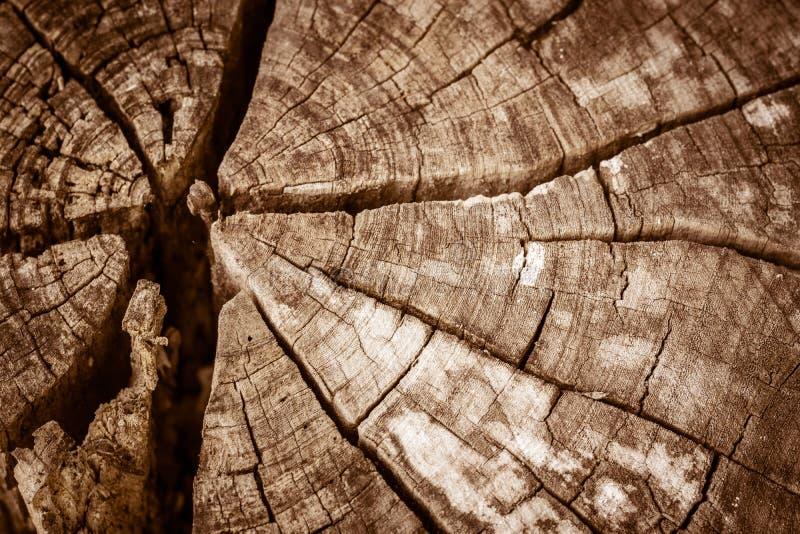 Oud gebarsten hout royalty-vrije stock foto