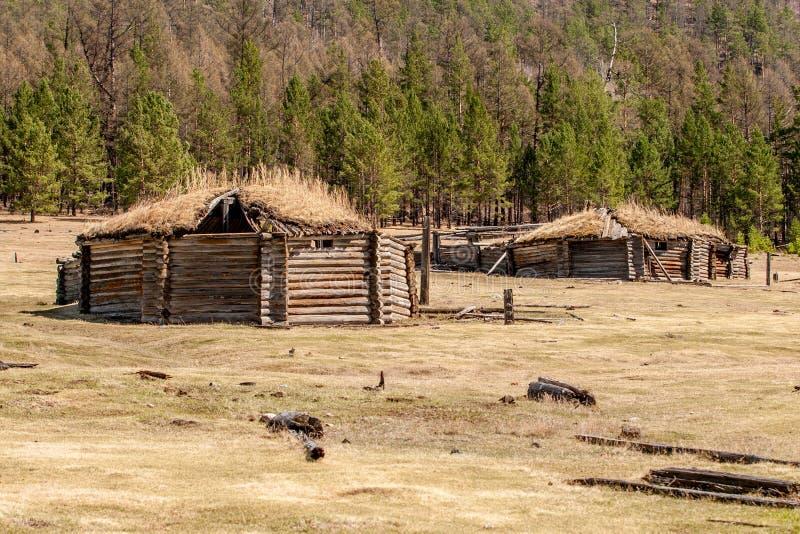 Oud geruïneerd yurts op het gebied tegen een bos stock foto