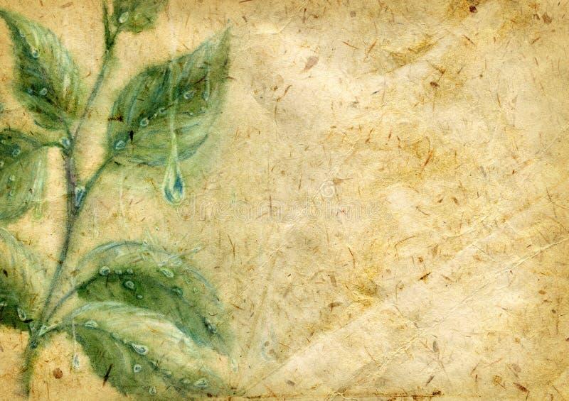 Oud geweven document met waterverfbladeren stock illustratie