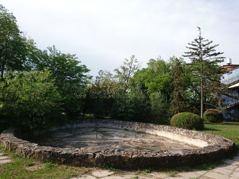 Oud groot zwembad in het bos onder de open hemel stock fotografie