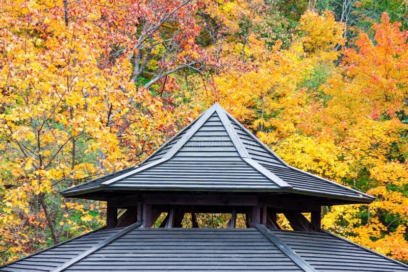 Oud houten dakwerkdetail met de achtergrond van het de herfstgebladerte stock foto