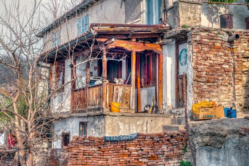 Oud huis in degradatie met katten stock afbeeldingen