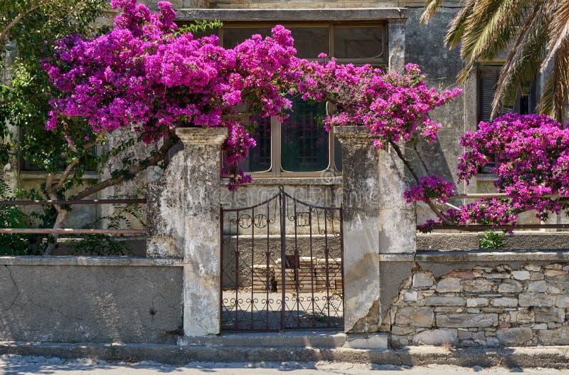Oud huis met bloemen royalty-vrije stock afbeelding