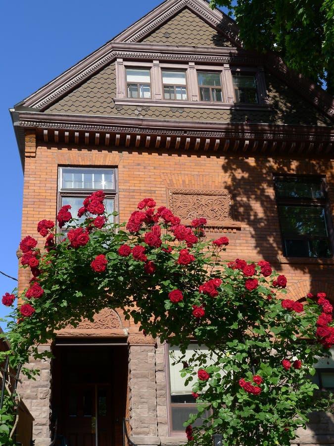 Oud huis met roze as royalty-vrije stock afbeelding