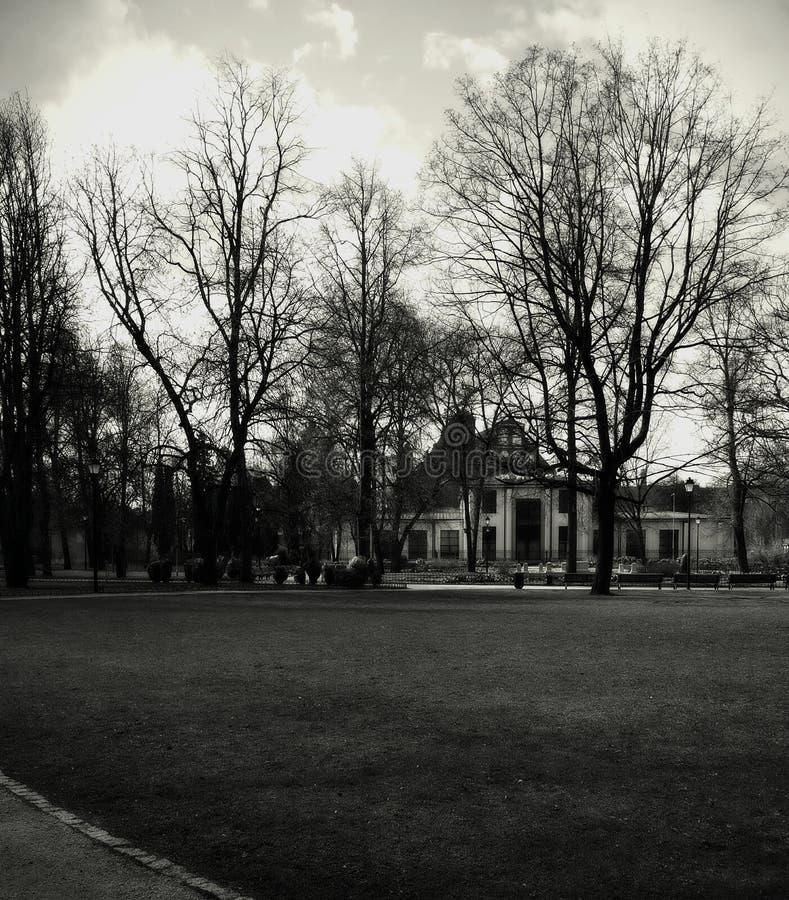 Oud huis in Park stock foto's