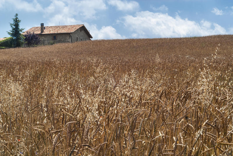 Oud landbouwbedrijf in Catalunya (Spanje) royalty-vrije stock foto's