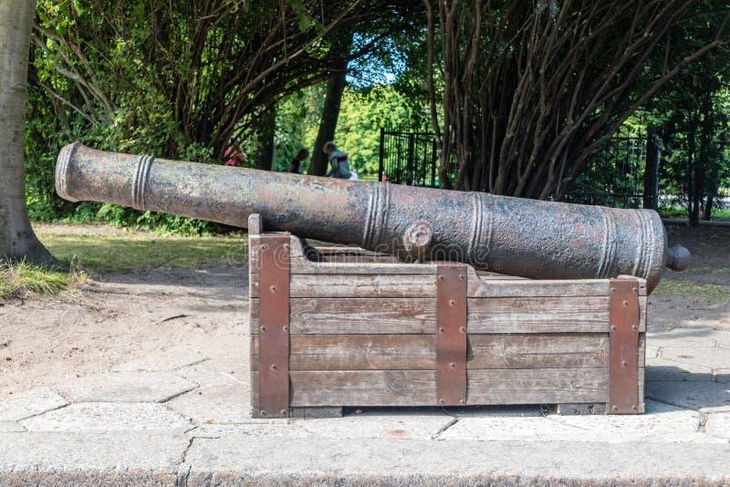 Oud middeleeuwse kanon in Kaliningrad, Russische Federatie stock afbeeldingen