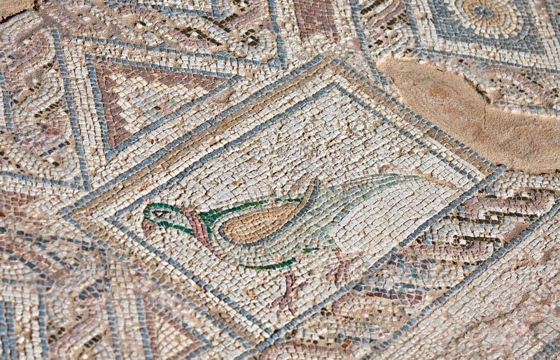 Oud mozaïek in Kourion, Cyprus royalty-vrije stock foto