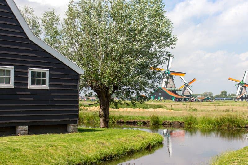Oud Nederlands windmolens, vijver en blokhuis in historisch dorp De molens van Holland op gebied met rivier en de oude bouw stock fotografie