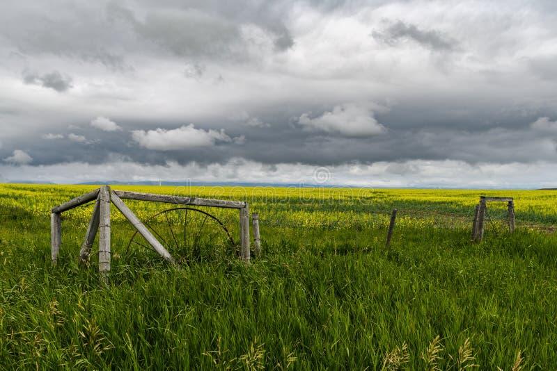 Oud omheining en gebied tegen een dramatische hemel in zuidelijke Alberta, Canada stock afbeelding