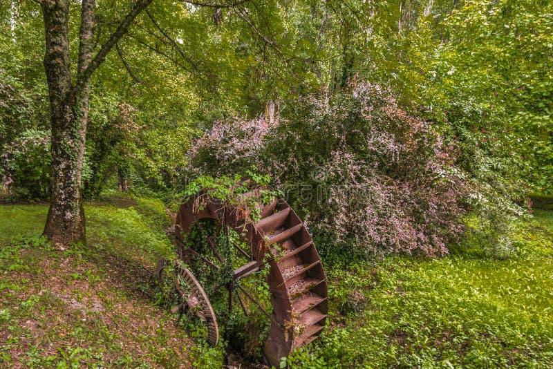 Oud roestig van nature opgesmukt watermillwiel, Frankrijk dichtbij stock foto