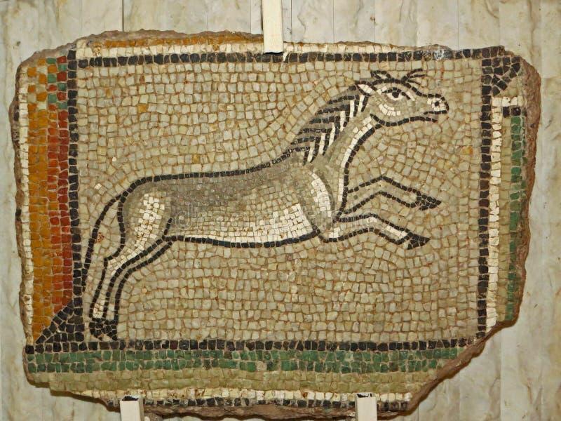 Oud Roman visantian de vloerelement die van het steenmozaïek paard vertegenwoordigen stock foto's