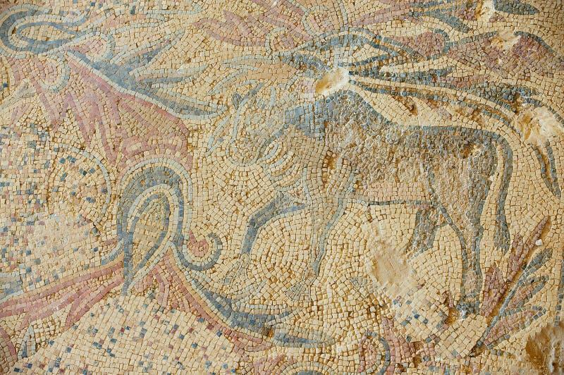 Oud Roman vloermozaïek bij de ruïnes van de Heilige Stevens Church bij een archeologische plaats in Umm AR-Rasas, Jordanië stock afbeelding