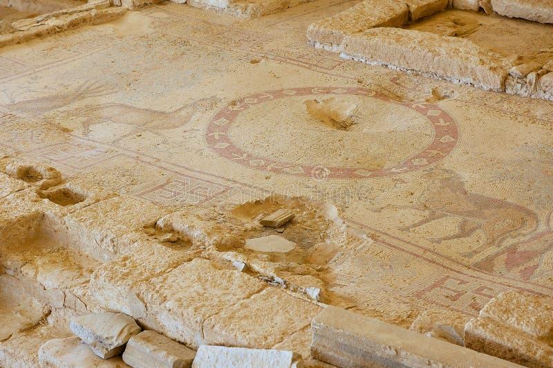 Oud Roman vloermozaïek in de Heilige Stevens Church bij een archeologische plaats in Umm AR-Rasas, Jordanië stock afbeeldingen