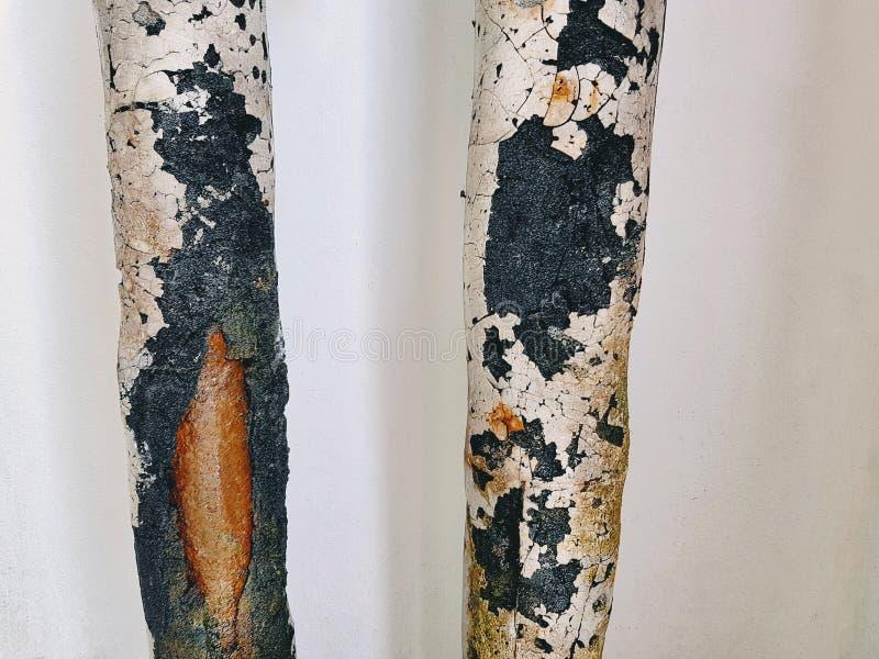 Oud Rusty Insulated Pipes van Koelwater stock afbeeldingen