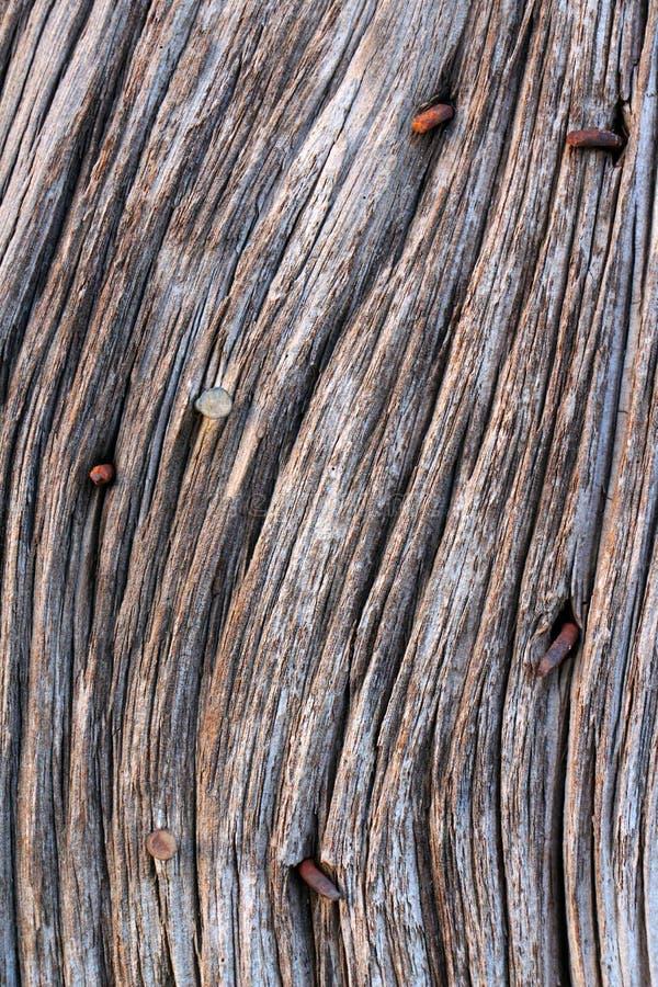 Oud Schuurhout met roestige spijkers stock foto